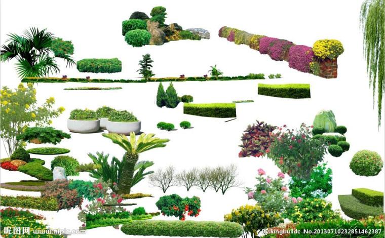 ps植物素材免费下载,ps植物模板,免费高清植物PND图片,植物设计