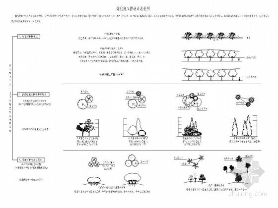 城市支路绿化工程全套施工图(13张)