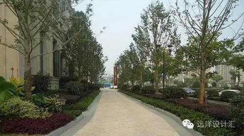 一个会种树的设计师,住宅每平方溢价3000元_28