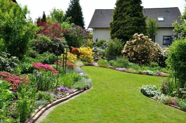 100种花草帮你打造满院繁花