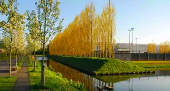 7种常用河道生态护坡形式-好养护