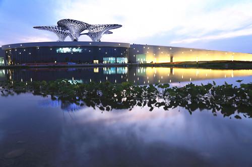 湿地园林与生态城市建设研讨会在河北衡水成功举办