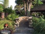 这才是乡村养老的最美庭院