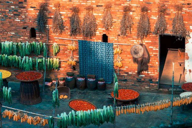 这才是中国人的院子,秋天美到骨子里_40