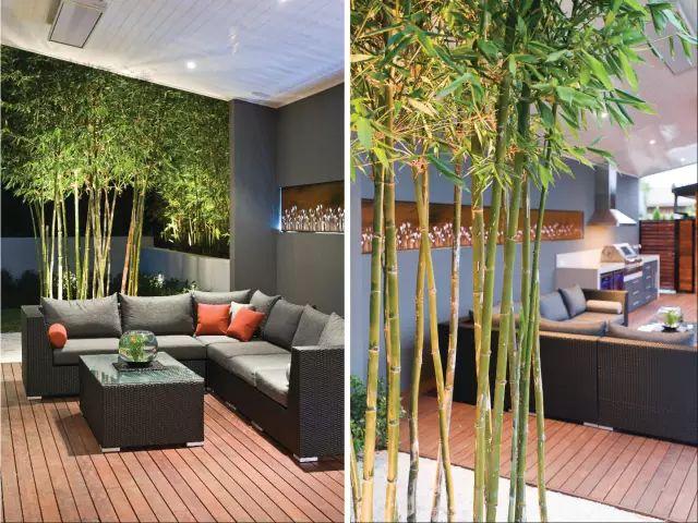 赶紧收藏!21个最美现代风格庭院设计案例_44