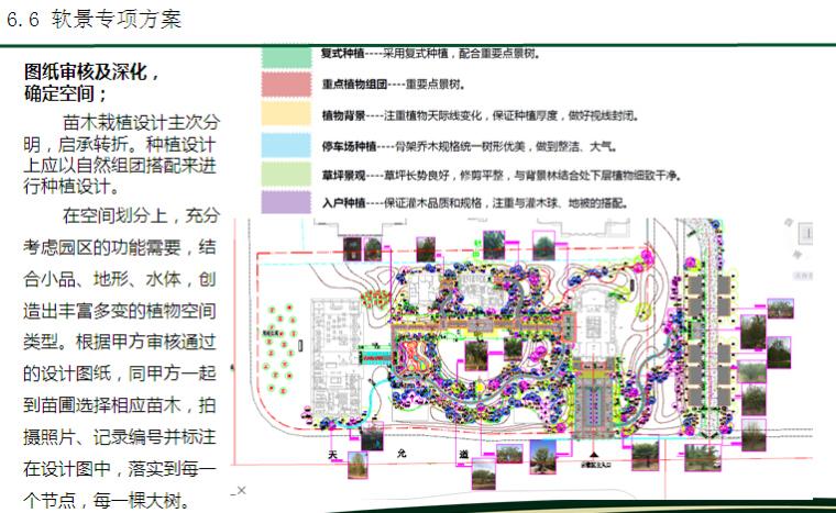 房地产园林工程标前项目分析解读(229页,技术标)_7