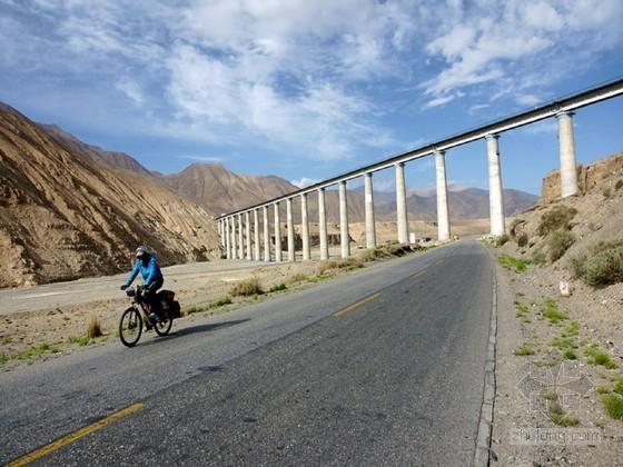 严寒条件下35~54.1m高墩桥梁快速施工技术报告116页(整体拼装 蓄热养护)