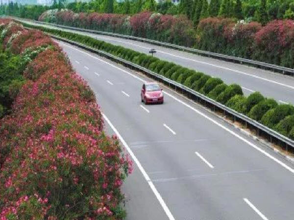 探讨公路绿化对环境改善的重要性