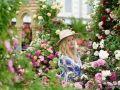 2019英国城市花园景观与乡村小镇