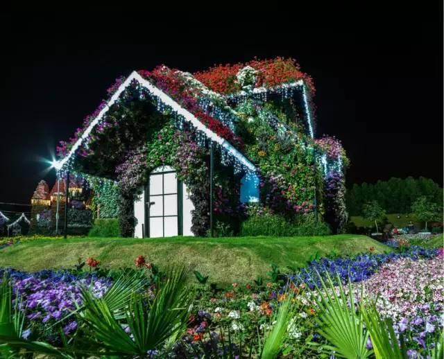 迪拜的花卉展览,全世界规模最大!你肯定没看过!_26