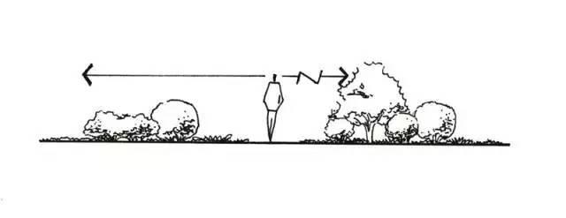 最全植物设计总则·干货_4