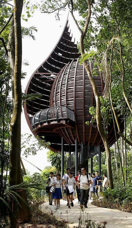 案例分享|新加坡双溪布洛湿地公园景观设计_12