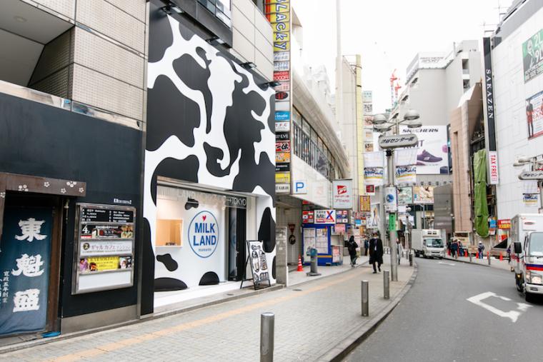 北海道奶制产品商店-11