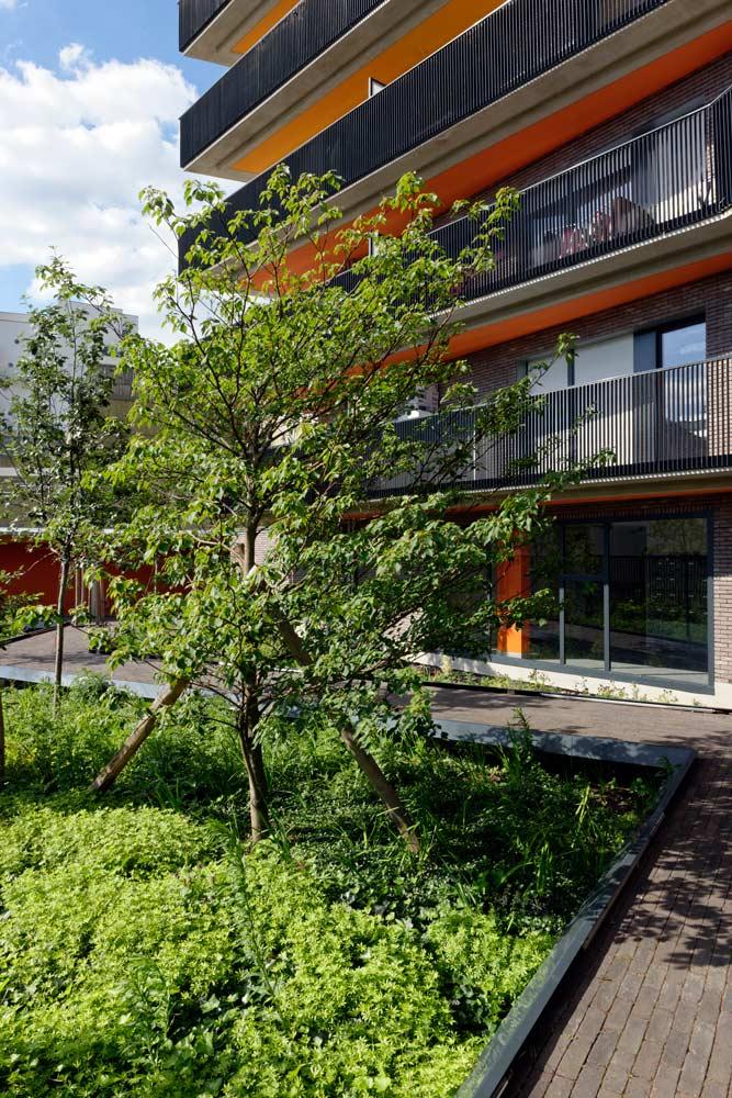 法国Docksde住宅景观-6
