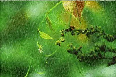 雨季施工,注意事项!