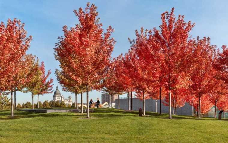 美国沃克艺术中心景观-5