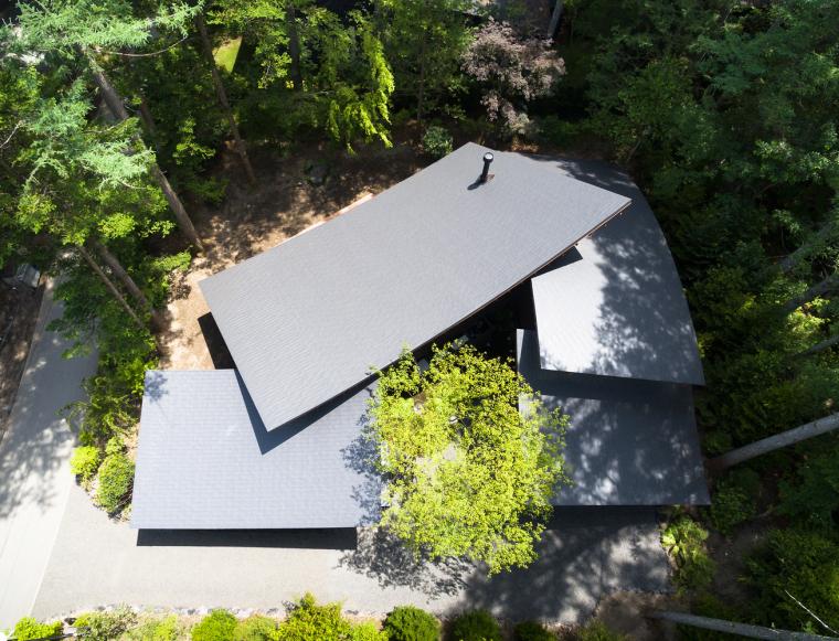 日本密林中的四叶别墅-3
