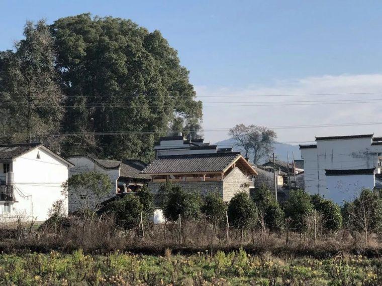 25个农村改造案例,这样的设计正能量爆棚_143