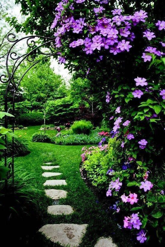 想要一个小院子,花开花落一辈子_6