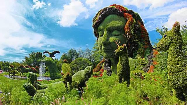 80个极美植物雕塑_2