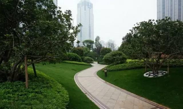景观中的园路设计_7