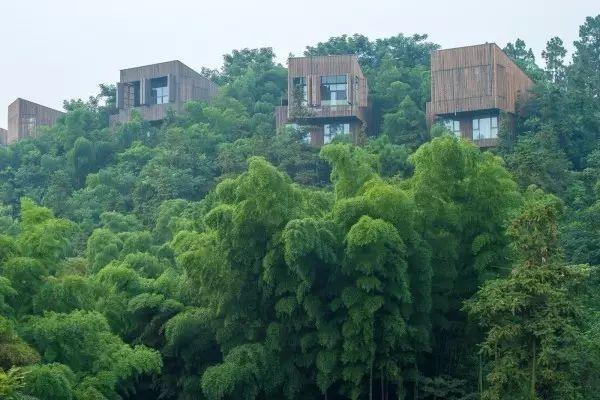 中国最美40家——设计型民宿酒店集合_149