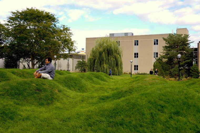 美国绿色波形草坪-9