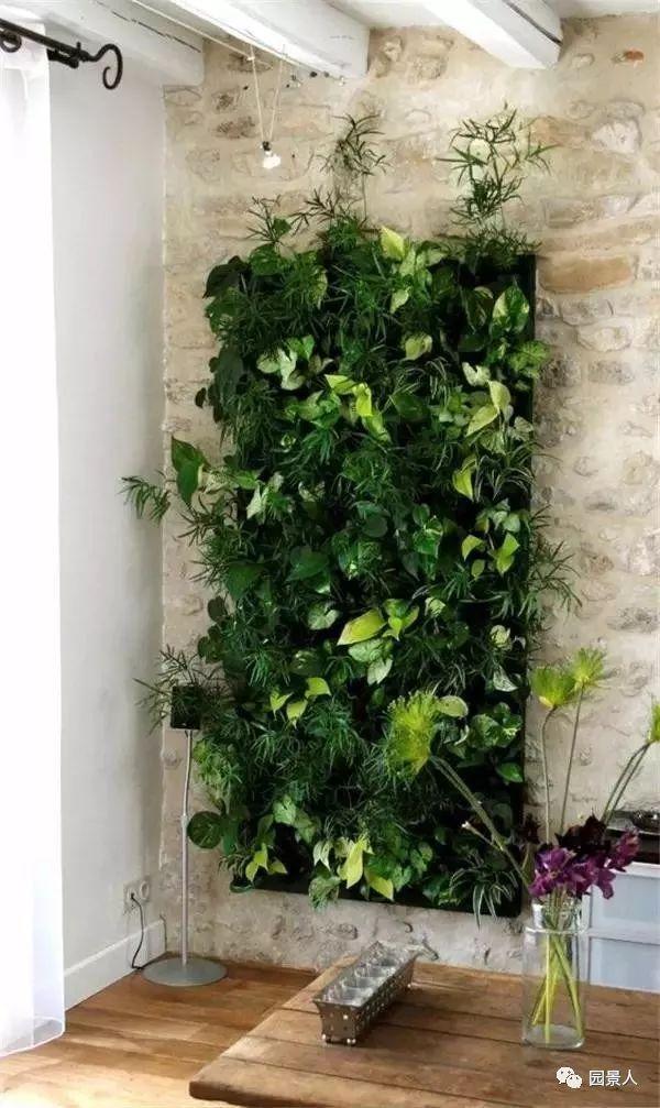 垂直绿化·会呼吸的墙壁_12