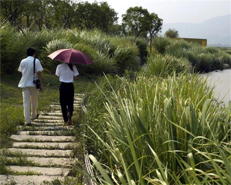 全面推进生态治水,景观设计师能做些什么?_19