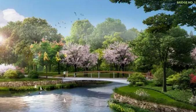 林带生态绿道桥的设计方案图