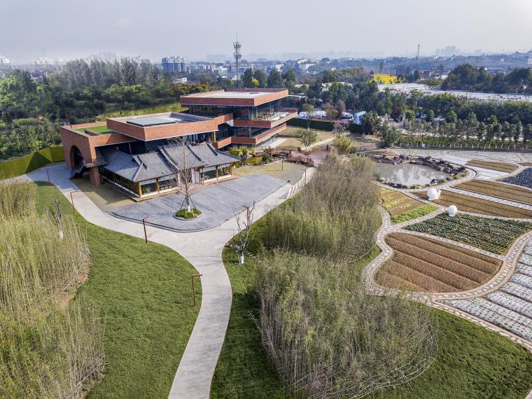 成都川西林盘上的国家级新区的田园综合体景观