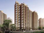单位住宅楼施工项目管理规划