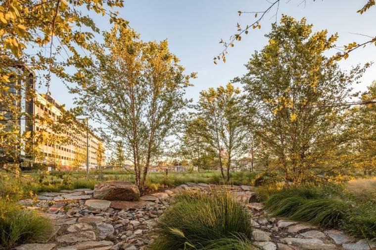 美国生态型医疗保健管理校园周围景观