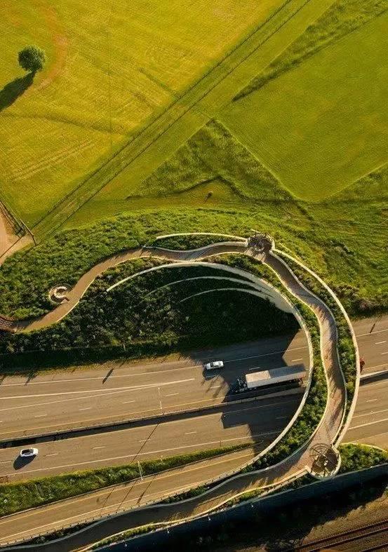 带你看看世界各地奇形怪状的景观桥,不要谢我!_15