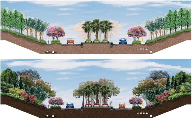 如何玩转植物造景之花镜_10