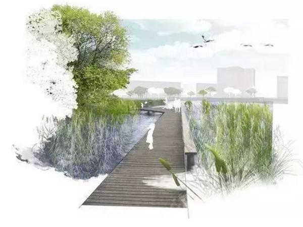 河道景观设计秘籍:驳岸、亲水、绿化、综合治理及生态修复等