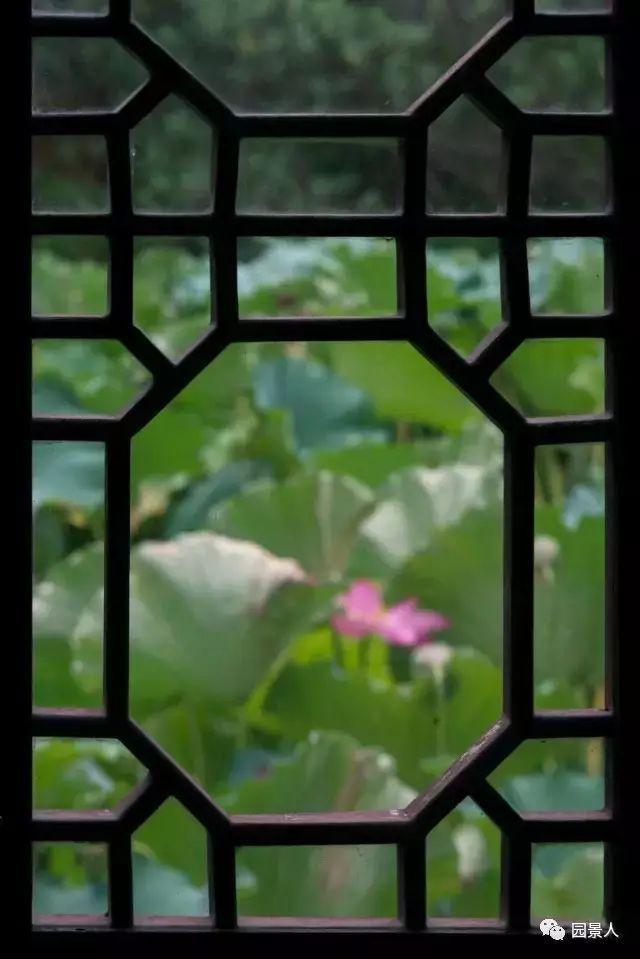 无窗,不园林!_29