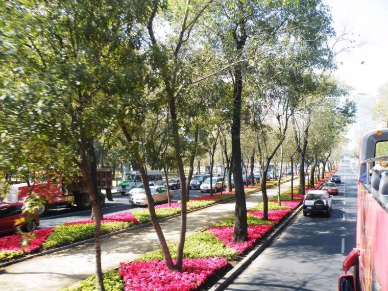 道路景观设计怎么破?看这里就够了!文末附:54套道路景观资料
