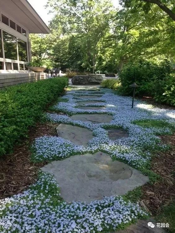 花草与石板的关系•花园小径_18