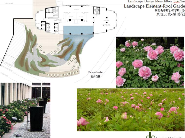 某居住景观设计概念-国外设计所-景观元素-屋顶花园