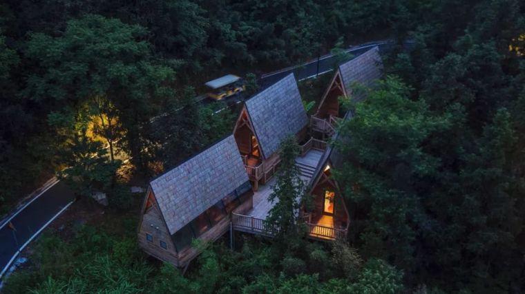 这些树屋,满足你对森林的所有幻想_12