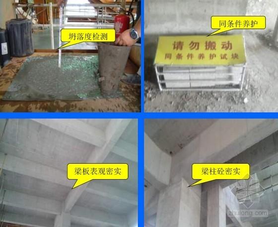 [云南]高层保障房项目施工质量常见问题专项治理情况汇报(90页 附图较多)