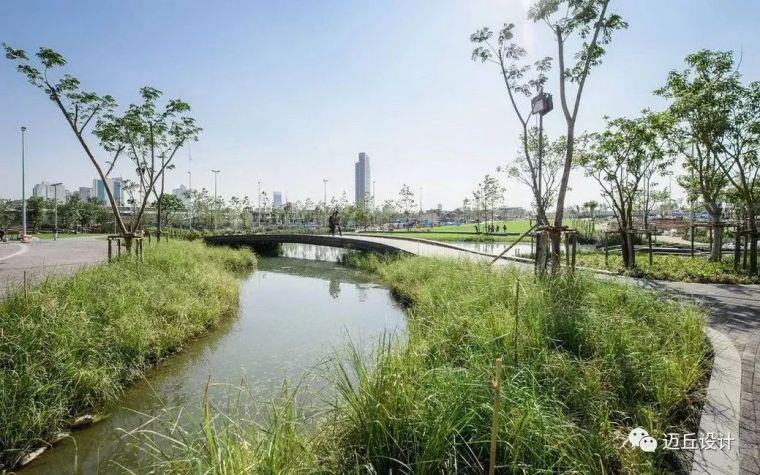 2019WLA世界建筑景观奖揭晓|生态创新_36