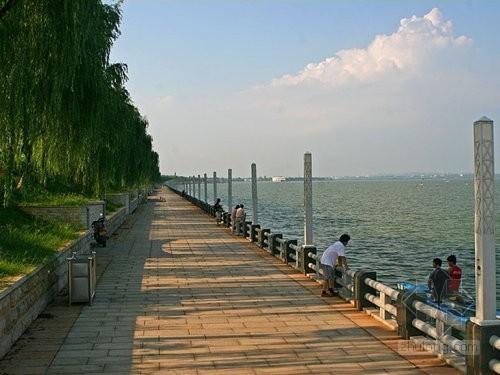 [湖南]沿湖景观工程监理规划(绿化、铺路、护栏)