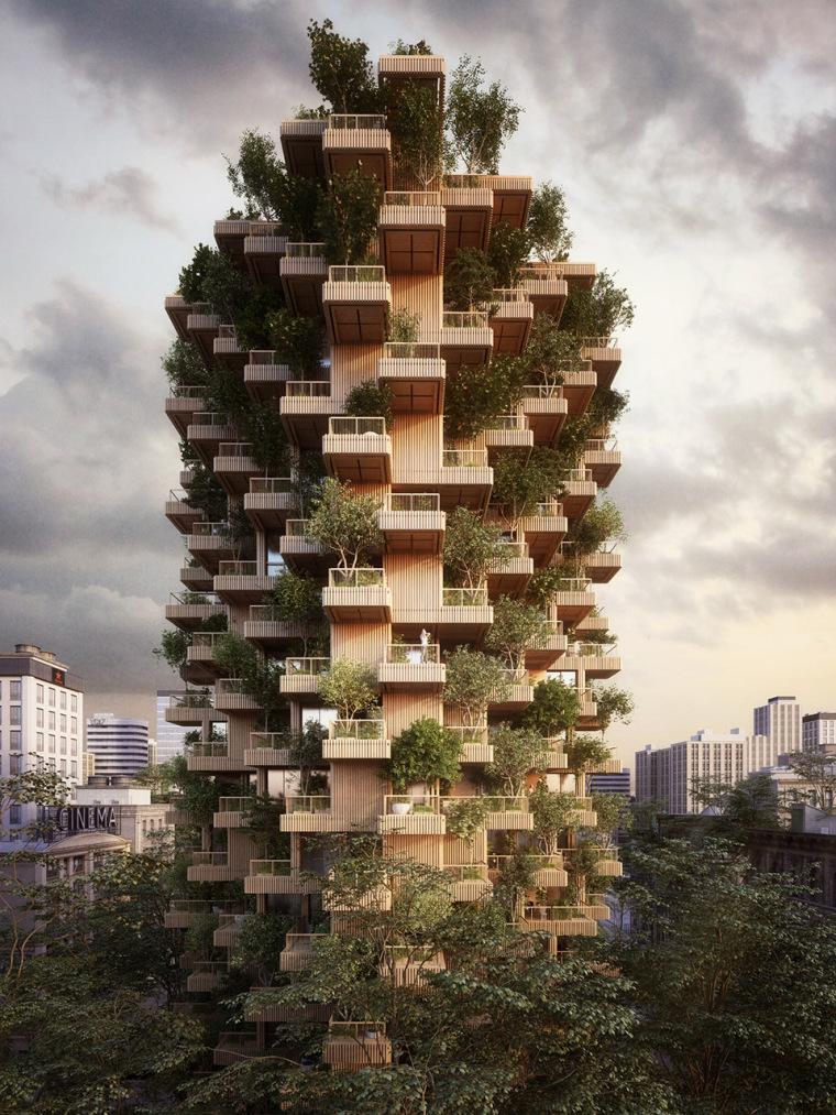 加拿大多伦多树塔