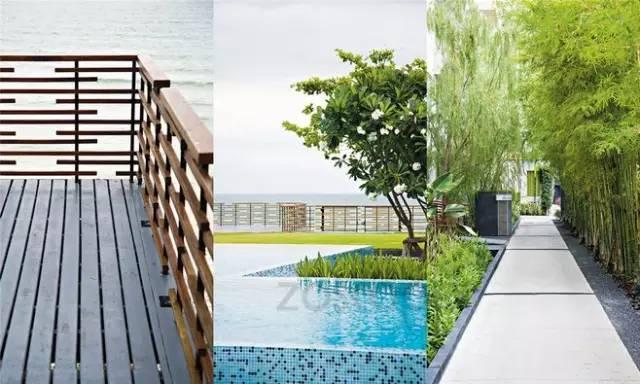 景观设计的雅竹