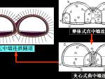 公路隧道功能设计及其结构考虑(71页)