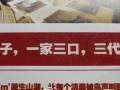 房地产广告是中国文坛的希望