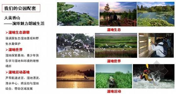 [中山]滨海新城区项目前期策划(双地块选择性开发策略)