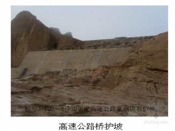 防洪护岸工程初步设计报告